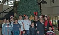 Στολίζοντας το Χριστουγεννιάτικο Δέντρο